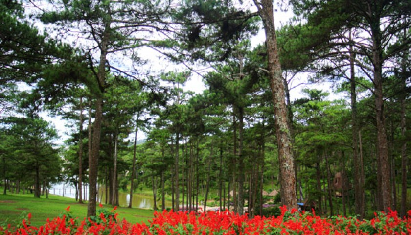 Da Lat City Tour Full Day
