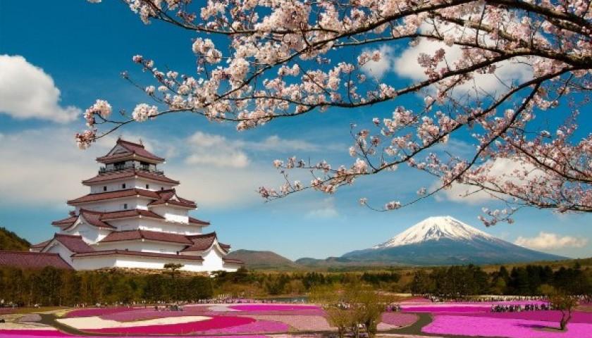 10 điểm ngắm hoa anh đào khoe sắc ở Nhật Bản và Hàn Quốc