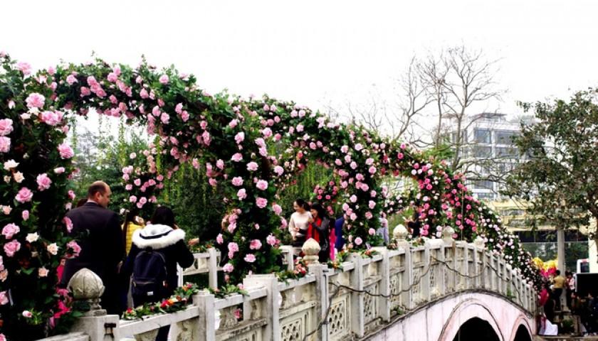 Lễ hội hoa hồng 'còn vé cũng không bán' nếu quá đông