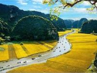 Hoa Lư - Tam Cốc - Hang Múa 1 ngày
